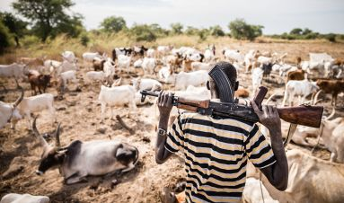 Communities tackling small arms and light weapons in South Sudan: lessons learnt and best practices