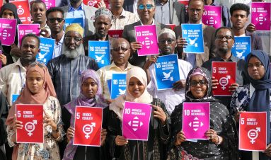 Enhancing accountability for peaceful, just and inclusive societies: Practical guidance for civil society reporting on SDG16+