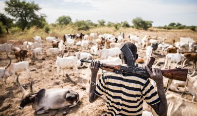 Informal armies: community defence groups in South Sudan's civil war