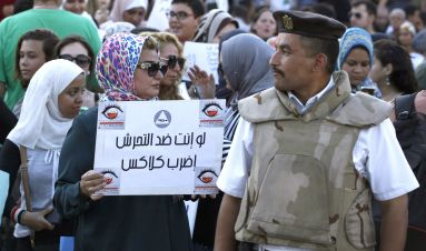 Violence against women in Egypt: prospects for improving police response