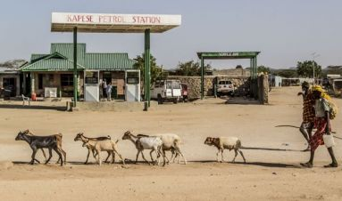 Governing black gold: lessons from oil finds in Turkana, Kenya