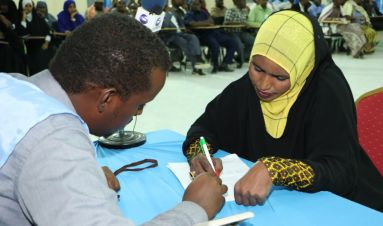Witnesses to Somalia's democratisation process