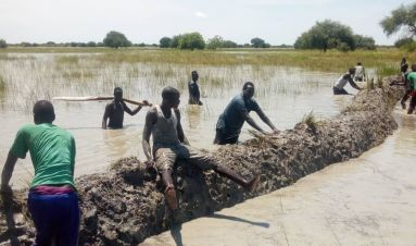 Young people responding to unprecedented flooding in South Sudan